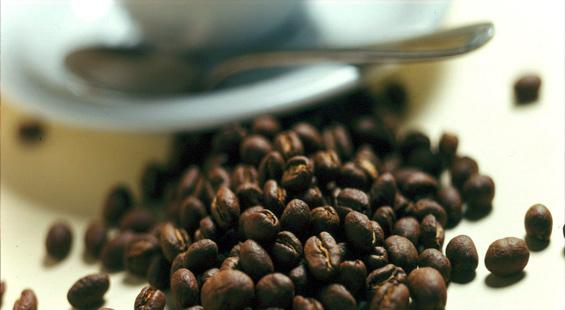 Andrea Café